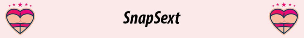 snapsext logo in pink background